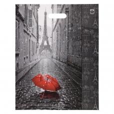 Пакет с вырубной ручкой ПВД, 45х38 см, 'Мой Париж', 60 мкм, н00084575